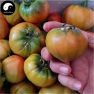 Buy Color Tomatoes Vegetable Seeds 800pcs Plant Chinese Fruit Tomatoes