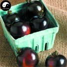 Buy Black Tomatoes Vegetable Seeds 100pcs Plant Chinese Fruit Tomatoes