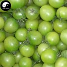 Buy Green Cherry Tomatoes Vegetable Seeds 800pcs Plant Fruit Cherry Tomatoes