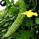 Buy Bitter Gourd Vegetable Seeds 120pcs Plant Momordica Charantia Bitter Melon