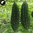 Buy Dark Bitter Gourd Vegetable Seeds 60pcs Plant Momordica Charantia Bitter Melon