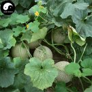 Buy Cantaloupe Fruit Seeds 200pcs Plant Sugar Melo Cucumis Sweet Hami Melon