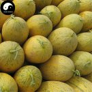Buy Cantaloupe Fruit Seeds 400pcs Plant Sugar Melo Cucumis Sweet Hami Melon