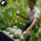 Buy Cucumis Melon Seeds 240pcs Plant Sugar Melon Sweet Muskmelon