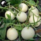 Buy White Cucumis Melon Seeds 240pcs Plant Sugar Melon Sweet Muskmelon