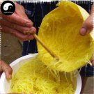 Buy Yellow Silk Melon Seeds 100pcs Plant Salad Melon Sweet Muskmelon