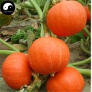 Buy Red Pumpkin Seeds 60pcs Plant Diabetes Vegetable Melon Cucurbita Moschata