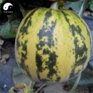 Buy Cucumis Melon Seeds 60pcs Plant Sweet Melon Vegetable Sugar Fruit Muskmelon