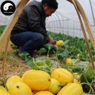 Buy Yellow Cucumis Melon Seeds 240pcs Plant Sweet Melon Vegetable Sugar Fruit Muskmelon