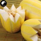 Buy Yellow Cucumis Melon Seeds 120pcs Plant Sweet Melon Vegetable Sugar Fruit Muskmelon