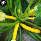 Buy Curuba Banana Melon Seeds 60pcs Plant Melon Vegetable Cassabanana Gourd