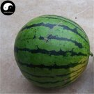 Buy Watermelon Fruit Seeds 100pcs Plant Citrullus Lanatus Big Round Watermelon