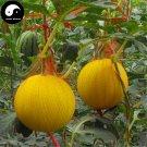 Buy Watermelon Fruit Seeds 50pcs Plant Citrullus Lanatus Yellow Skin Watermelon