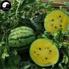 Buy Watermelon Fruit Seeds 100pcs Plant Citrullus Lanatus Yellow Meat Watermelon