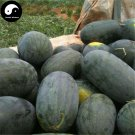 Buy Watermelon Fruit Seeds 100pcs Plant Citrullus Lanatus Black Beauty Watermelon