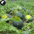 Buy Watermelon Fruit Seeds 50pcs Plant Citrullus Lanatus Round Black Beauty Watermelon