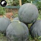 Buy Watermelon Fruit Seeds 100pcs Plant Citrullus Lanatus Round Black Beauty Watermelon