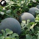Buy Watermelon Fruit Seeds 200pcs Plant Citrullus Lanatus Round Black Beauty Watermelon