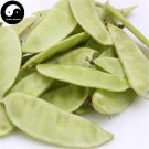 Buy Green Moon Beans Vegetable Seeds 200pcs Plant Lentils Bean Lablab Purpureus