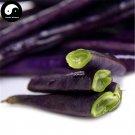 Buy Purple Season Beans Vegetable Seeds 50pcs Plant Phaseolus Vulgaris Bean