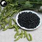 Buy Black Soya Bean Vegetable Seeds 200pcs Plant Chinese Bean Glycinemax