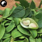 Buy Color Kidney Beans Vegetable Seeds 60pcs Plant Chinese Bean Phaseolus Vulgaris