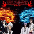 Bleach Anime Art 32x24 Poster Decor