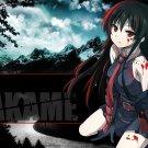 Akame Ga Kill Anime Art 32x24 Poster Decor