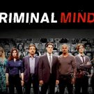 Criminal Minds TV Show Art 32x24 Poster Decor