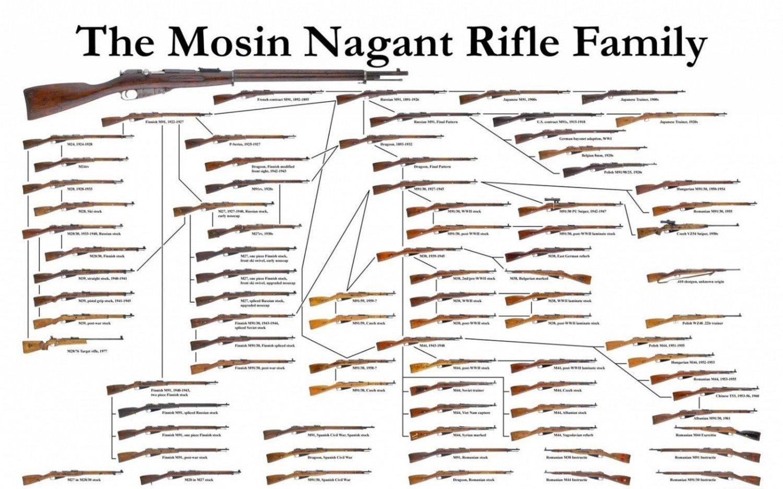 Guns Military Rifles Charts Art 32x24 Poster Decor