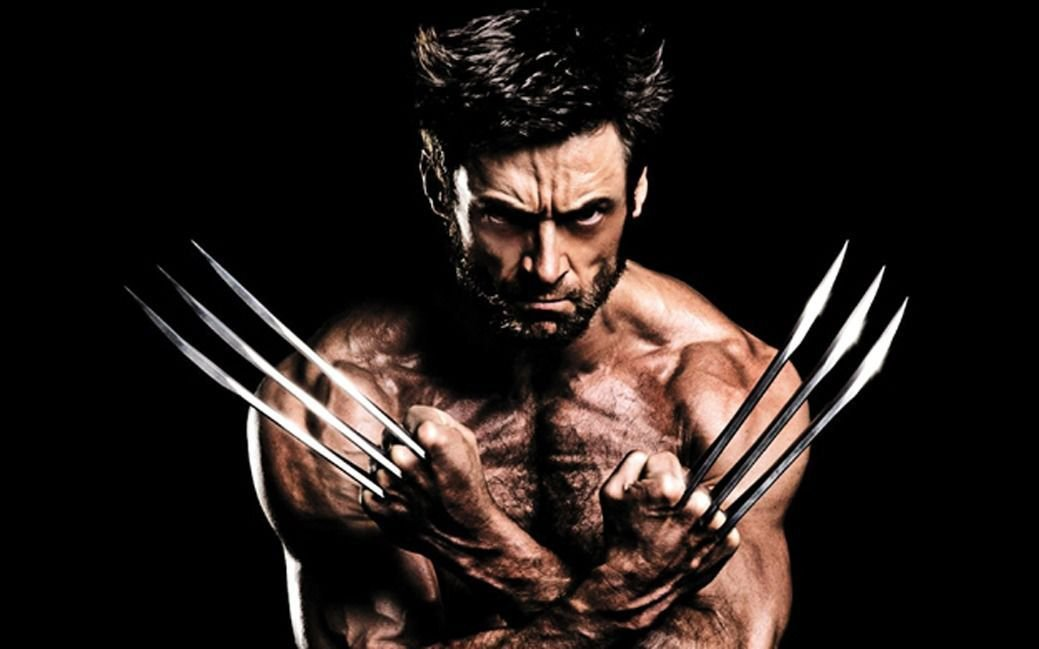 Hugh Jackman Wolverine Art 32x24 Poster Decor