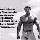 Arnold Schwarzenegger Bodybuilder Mr Olym Art 32x24 Poster Decor