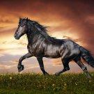 Galloping Horses Art 32x24 Poster Decor