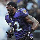 Ray Lewis American Football Star Art 32x24 Poster Decor