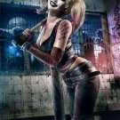 Harley Quinn Batman Arkham City Art 32x24 Poster Decor