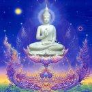 Buddha Shakyamuni Portrait Wall Print POSTER Decor 32x24