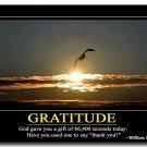 GRATITUDE Motivational Quotes Art Poster 32x24