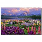 Grand Teton National Park Nature Poster Spring Flowers And Mountains 32x24
