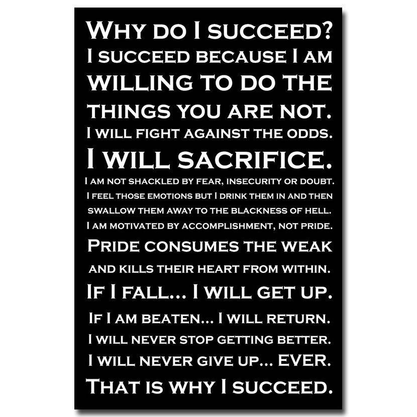 Why Do I Succeed Inspirational Quotes Art Poster Modern Office Home Decor 32x2
