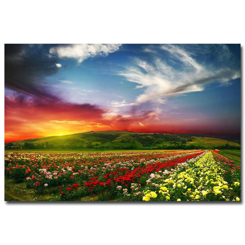 Sunset Mountains Flowers Nature Poster 32x24