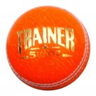 New Orrange Trainer 156 GM MCC Regulation leather cricket balls pack of 6 for Indoore and Outdoore