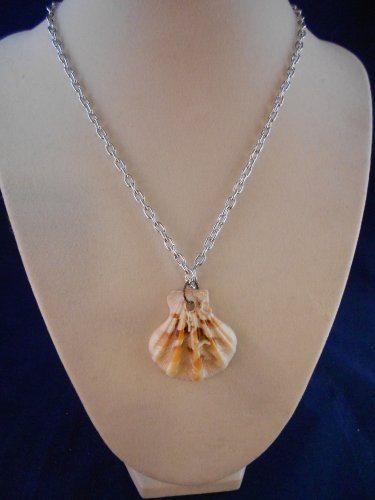 Fashion Jewelry, 16� Scallop Shell Pendant S107, Natural, Different and Unique