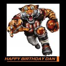 Cincinnati Bengals Party Edible image Cake topper decoration