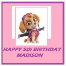 Paw Patrol Skye Party  Edible image Cake topper decoration