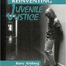 Ebook 978-0803948297 Reinventing Juvenile Justice