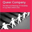 Ebook 978-1409401919 Queer Company: The Role and Meaning of Friendship in Gay Men's Work Lives