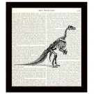 Dinosaur Dictionary Art Print Iguanodon Skeleton Natural History Archaeology