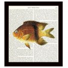 Nautical 8 x 10 Dictionary Art Print Perch Ocean Life Fish Vintage Home Decor