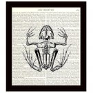 Dictionary Art Print 8x10 Frog Skeleton 18th Century Illustration Biology Class