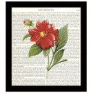 Floral Dictionary Art Print 8 x 10 Red Flowers Vintage Botanical Garden Decor